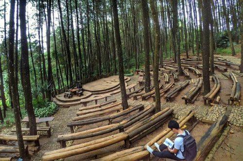 tempat wisata hutan pinus mangunan jogja